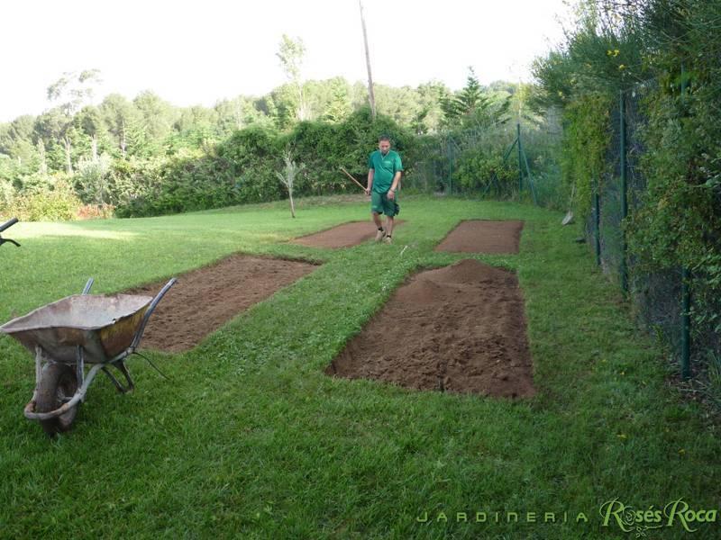 JardineriaRosesRoca14