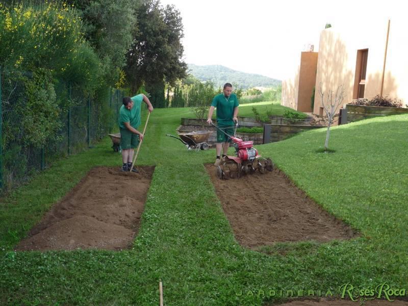 JardineriaRosesRoca42