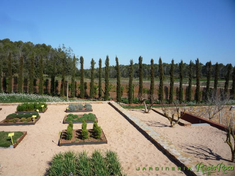 JardineriaRosesRoca12