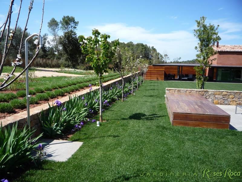 JardineriaRosesRoca20