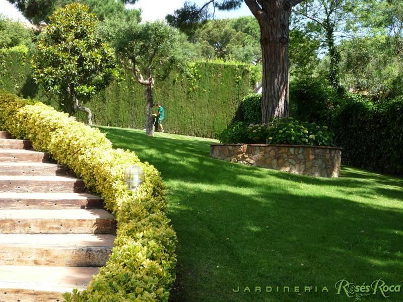 JardineriaRosesRoca3