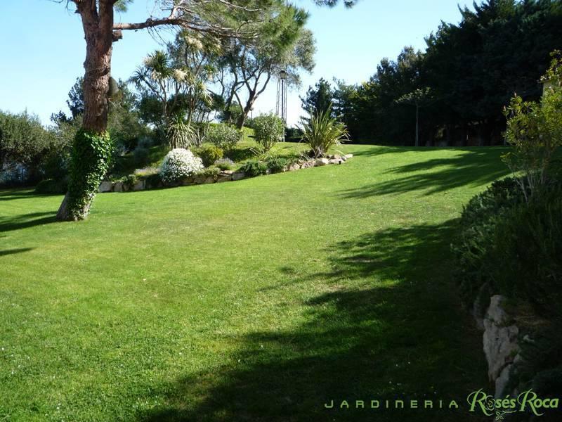 JardineriaRosesRoca38