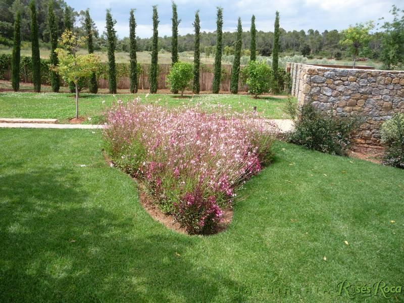 JardineriaRosesRoca54