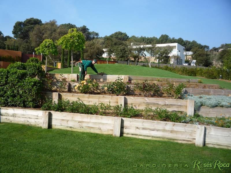 JardineriaRosesRoca6