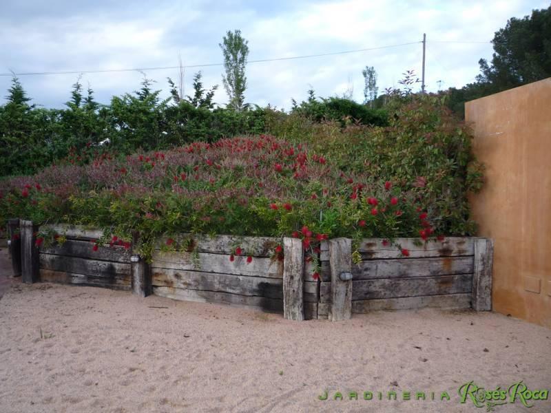 JardineriaRosesRoca62