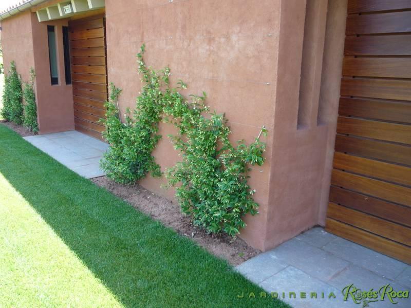JardineriaRosesRoca71