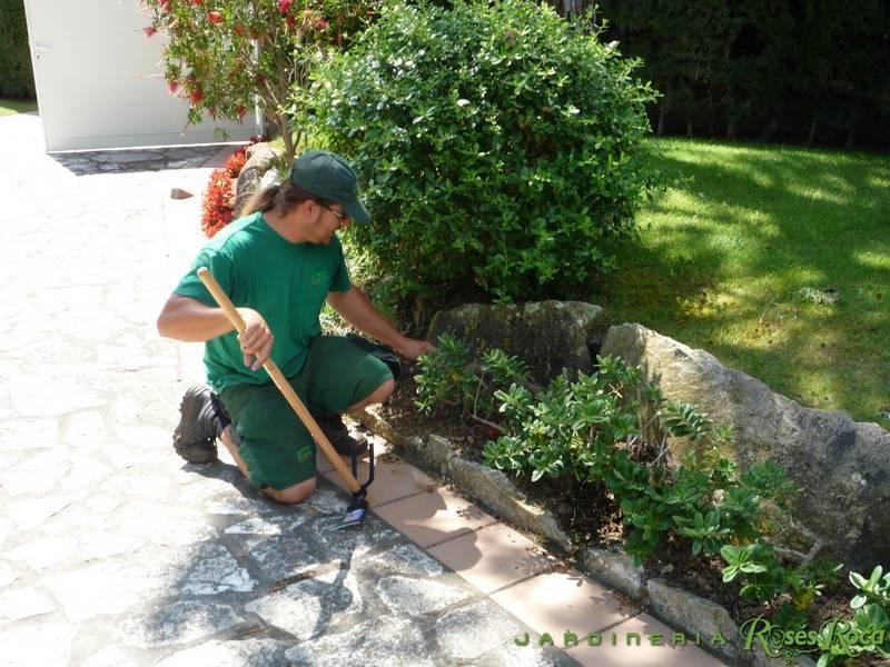 JardineriaRosesRoca81