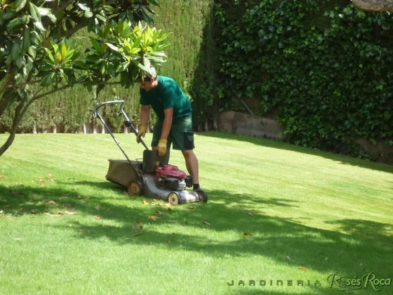 JardineriaRosesRoca82